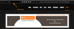 BTG Solutions Web Search Example
